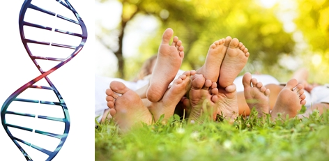 Chiropody and Podiatry in Durham
