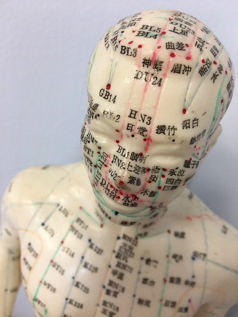 Traditional Chinese Medicine for hay fever sufferers