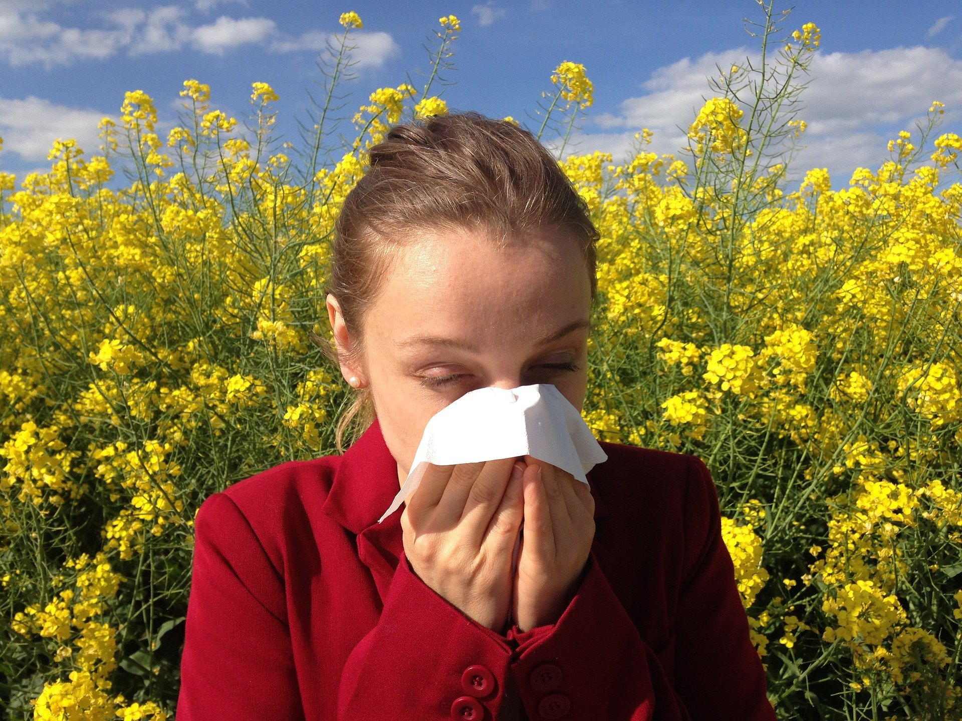 Treating Hay Fever with Traditional Acupuncture